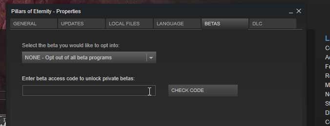 pe-beta-check-code.jpg